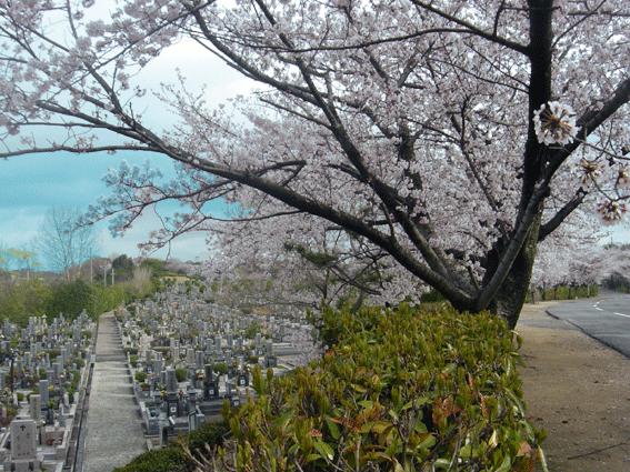 石ヶ谷墓園.png