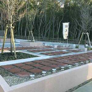 樹木葬の写真